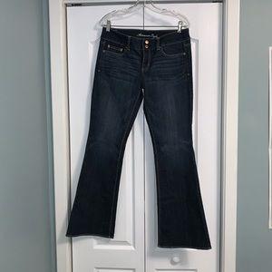 American Eagle regular stretch artist jeans 10